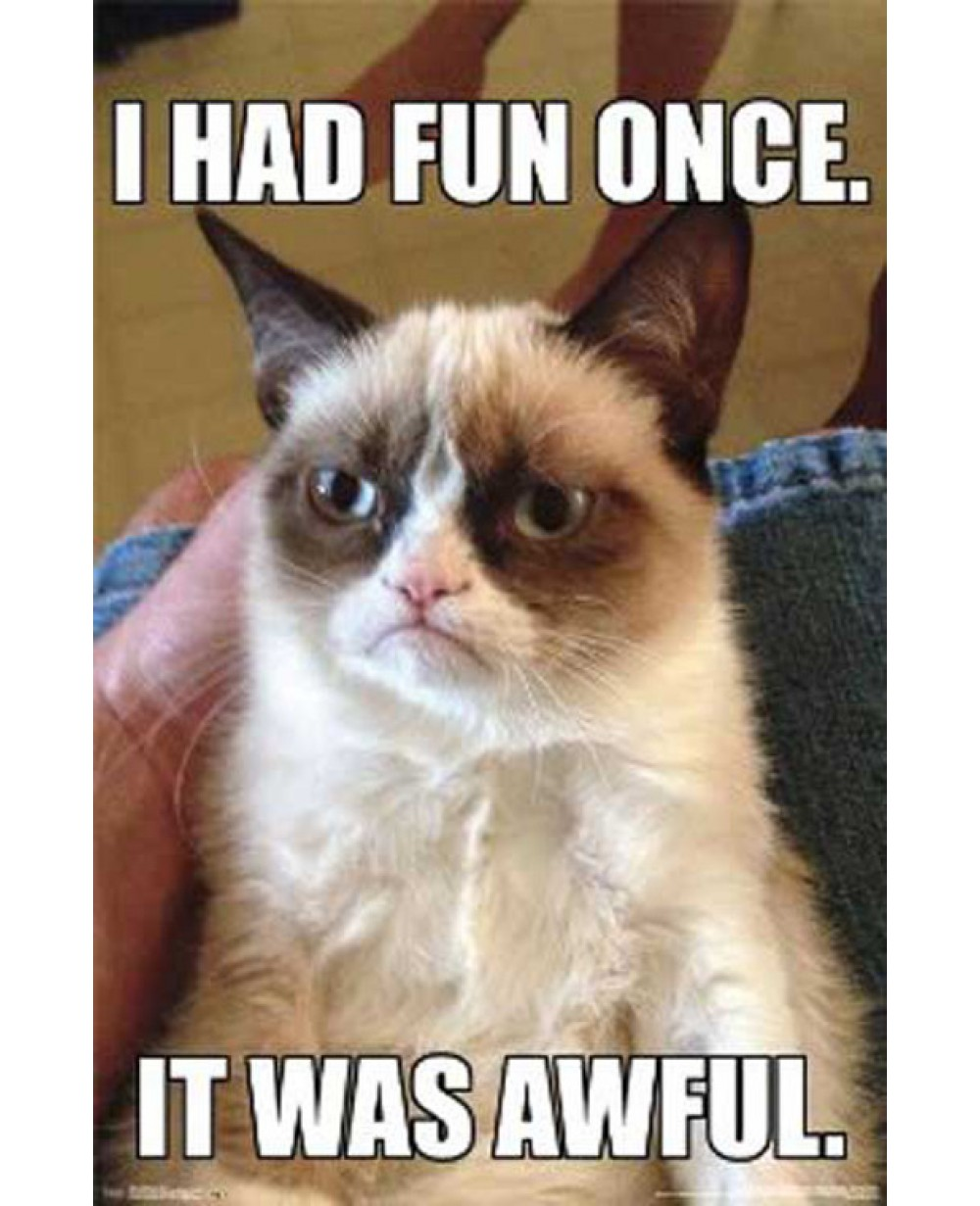 Grumpy Cat I Had Fun Once It Was Awful Poster