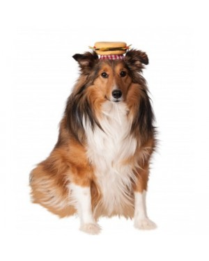Pet Cheeseburger Hat
