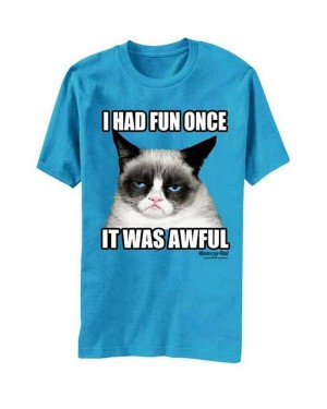 I Had Fun Once It Was Awful Turquoise Grumpy Cat T-Shirt