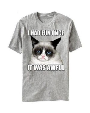 I Had Fun Once It Was Awful Grey Grumpy Cat T-Shirt