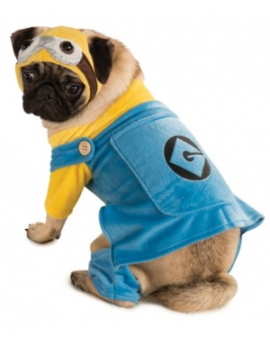 Minion Despicable Me Pet Costume