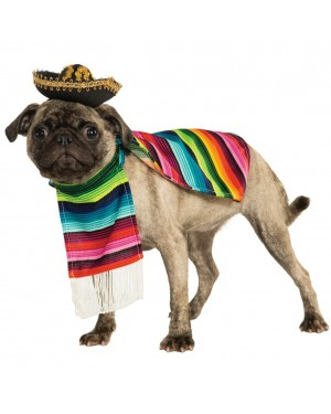 Mexican Sarape Pet Costume