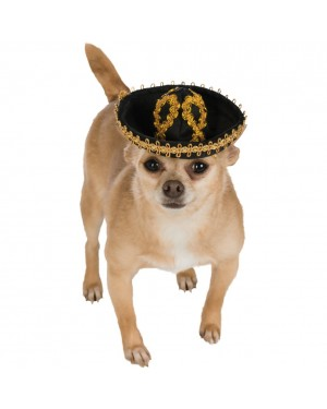 Black and Gold Pet Sombrero